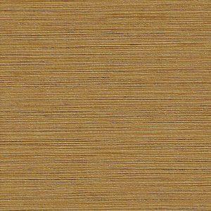Allegria 3373-AL-Rumba