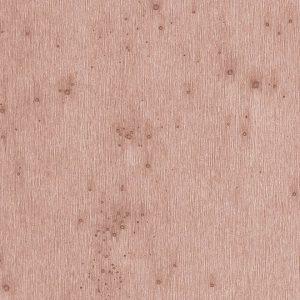 Lush Stellar 37503A