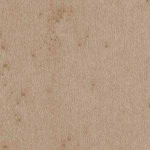 Lush Stellar 37522A