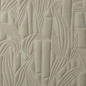 Bambusa 43011
