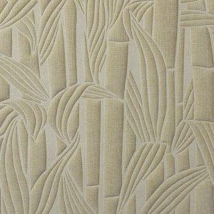 Bambusa 43012