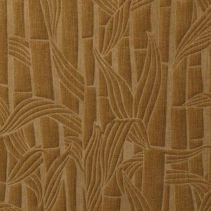 Bambusa 43014