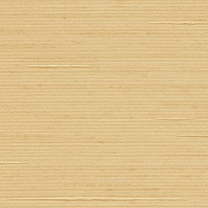 Arani Silk 5010-AS Raffia