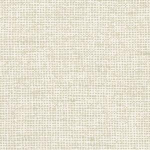 Essentials | Les Nuances Chanderi 91500