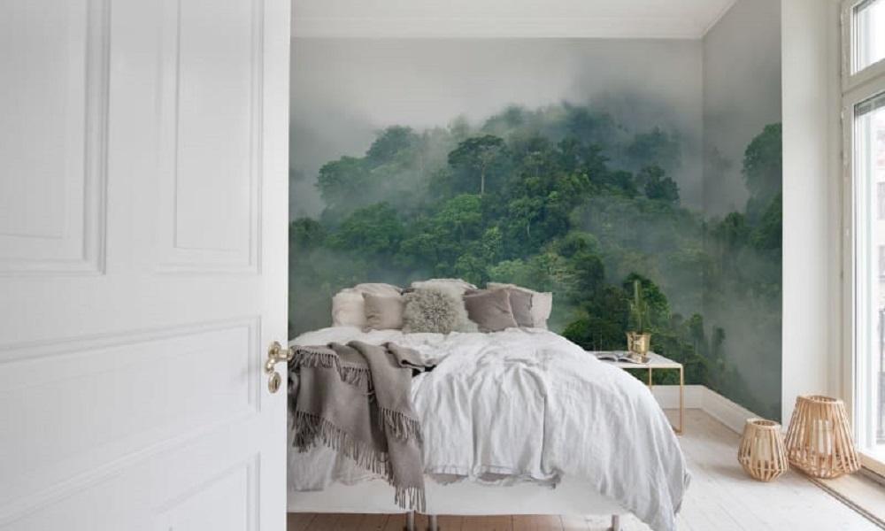 Misty Forest Interior Shot (1)