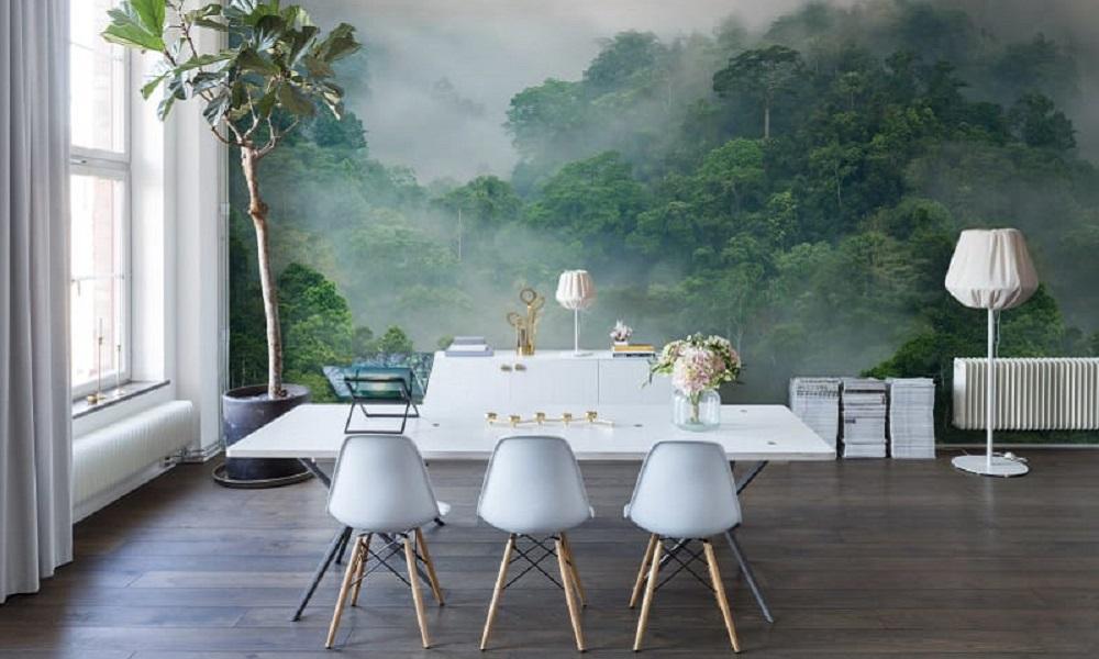 Misty Forest Interior Shot (3)