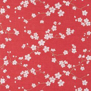 Sakura T75513